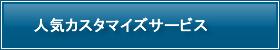 人気WPカスタマイズサービス